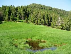 Вид на гору Стеавул