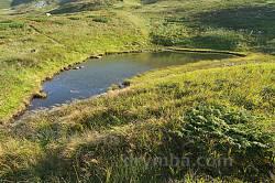 Озерце на Чорногорі