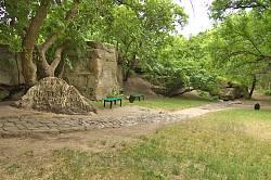 Парк на Замковій горі у Чигирині