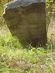 На Трахтемирівському козацькому цвинтарі