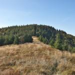 Гора Лопата (біля м.Сколе, хребет Зелемянка, Сколівські Бескиди)