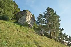 Камінь - дірявець у селі Дуброва