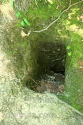 Скеля з трьома печерами
