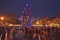 Главная львовская елка 2015 возле Оперного театра