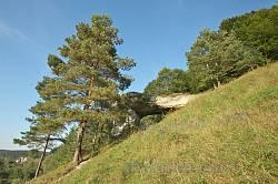 Камінь-дірявець у селі Дуброва