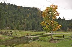Пейзаж по дороге в село Каменка 2
