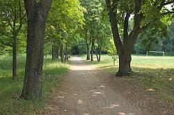 Алея на материковій частині парку Лопухіних