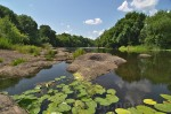 Корсунь. Береги Росі у парку Лопухіних. Фото 2