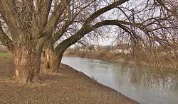 Річка Дністерe у Розвадові