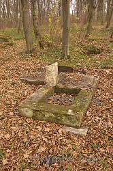 Закладський ліс. Залишки надгробків