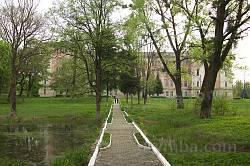 Заклад. Парк навколо палацу