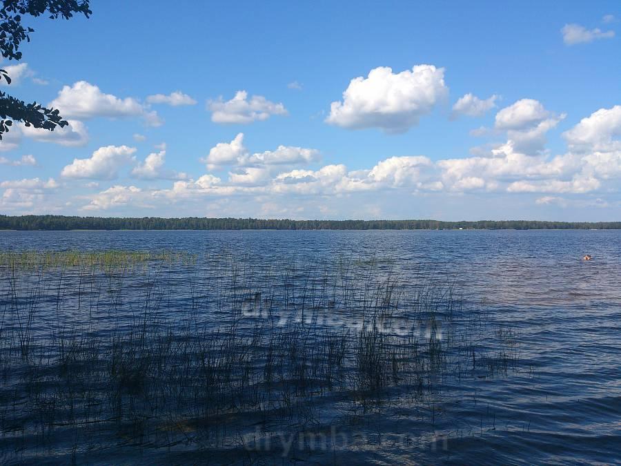 белое озеро ровенская область фото этот
