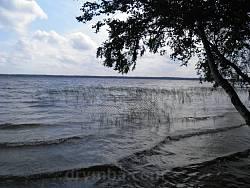 Біле озеро поблизу села Рудка на Рівненщині