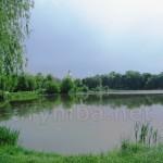 Старий парк XVIII ст. (Памятка археології)