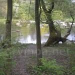 Парк садиби Потоцьких