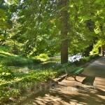 "Парк ""Софіївка"". Головна алея"