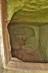 Печера, пристосована під пивницю