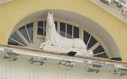 Палац Баворовських у Львові. Скульптура коня на фронтоні