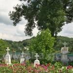 Цвинтар Богоявленського монастиря