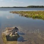 Озеро Піщанське (с.Піща, Волинська обл.)