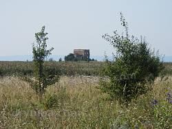 Церковь св.Ильи (руины) (с.Цибли, Киевская обл.)