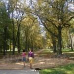Парк Енгельгардта в Будищі