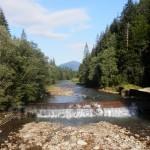 Река Молодая на окраинах Осмолоды