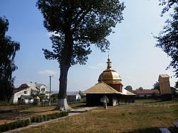 Церква Успіння в Глинянах. За легендою, це дерево посадив тут сам Хмельницький!