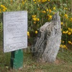 Стоянка древніх мисливців на території музею в Мезині