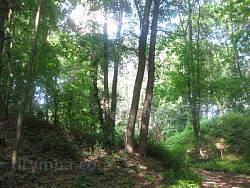 Уголок Тростянецкого парка