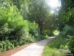Парковая аллея в Тростянце