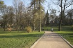 Паркова алея