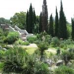 Нікітський ботанічний сад (с.м.т. Нікіта, Крим)