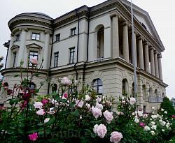 Цветники вокруг дворца