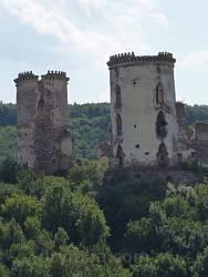 Руїни замку-палацу Понінських