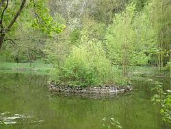 Малієвецький парк. Острівець на озері