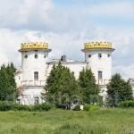 Палац графа Рум'янцева-Задунайського (с.Вишеньки, Чернігівська обл.)