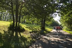 "Парк ""Софіївка"". Паркова алея"