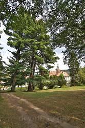 Парк маєтку графів Шенборнів