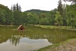 Озеро у парку Шенборнів