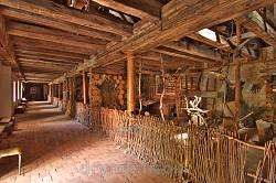 Мукачівський історичний музей. Зоологічна експозиція