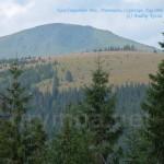 Гора Чивчин та сусідня полонина