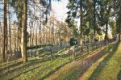 Унів. Монаший цвинтар на Чернечій горі
