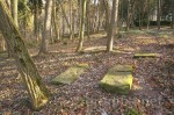 Унів. Старовинний цвинтар на Чернечій горі