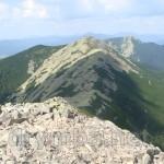 Вигляд на гору Довбушанку