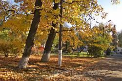 Парк усадьбы Потоцких-Реев осенью