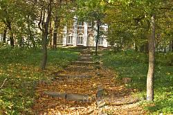 Микулинецький парк. Сходи до палацу