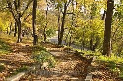Парк садиби Потоцьких-Реїв. Спуск