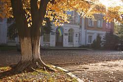 Палац Потоцьких-Реїв