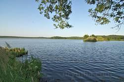 Озеро Янівський Став
